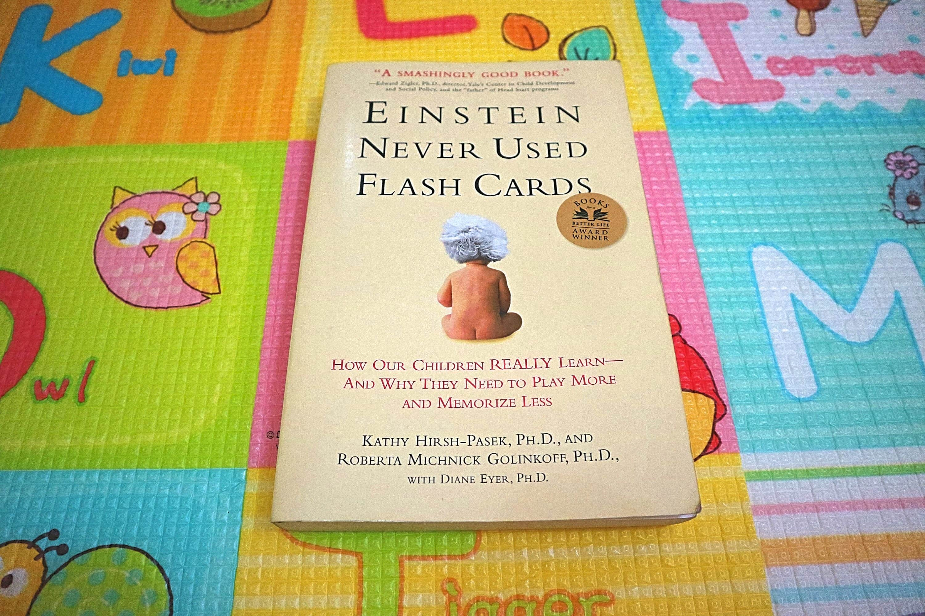 a book about how babies learn called einstein never used flash cards
